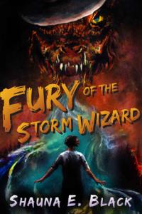 shop_fury